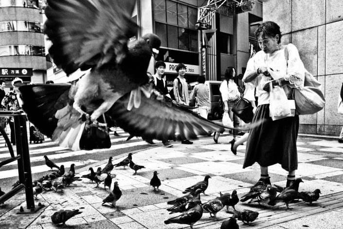 Japanese woman in Tokyo feeds pigeons with bread, one pigeon is close up. Street photography by victor borst